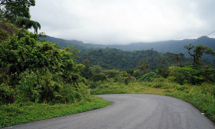 Panama_w drodze do Bocas del Toro